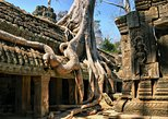 Asia - Cambodia: Angkor Wat temples with private tour guide