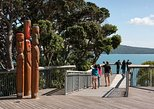 Amazing Private Auckland Sights Tour