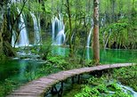 Lovely Plitvice Lakes & Tesla's Birthplace (Smiljan) Full-day Private Tour