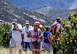 Swartberg Pass Tour including Traditional Karoo Lunch