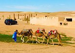 Majorelle Gardens,desert camel riding ,lunch in a tent and Atlas Mountains tour