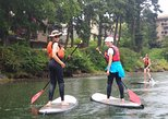 Victoria Harbour Stand-Up Paddleboard Tour