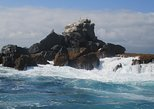 4 Day San Cristobal Galapagos Island Hopping express