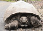 8 Day Land-based Trip in Galápagos exploring 5 Islands Express