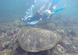 6 Day Trip in San Cristobal & Santa Cruz Islands Galapagos Land-based express