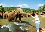 Kandy & Nuwara Eliya 2 Days Tour