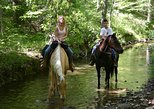 2-Hour Horseback Riding Experience in Marmaris