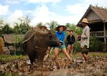 13-Day Thailand and Laos Adventure Tour from Bangkok