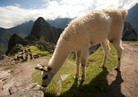 6-Day Experience in Cusco, Sacred Valley and Machu Picchu