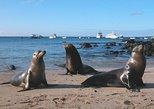 9 Day Galapagos Island Classic - Group Tour