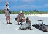 5 Days Galapagos Tour: Santa Cruz and Isabela Islands