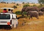 8 Days Mombasa, Tsavo East, Amboseli, Naivasha & Masai Mara Safari