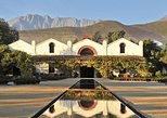 Andes Mountains Private Wine Adventure: Errazuriz and San Esteban Vineyards
