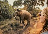 2 Days Tour to Udawalawe & Yala National Park From Colombo