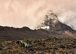 Climb Mount Kilimanjaro: 8 Days Lemosho Route