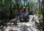 ATV Jungle Explorer