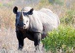 4 Day Rhino Tour