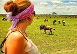 4 Days Migration Safari