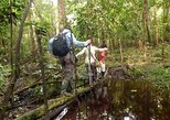 2-Day Wildlife Observation in the Pacaya Samiria National Reserve