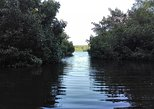 Caroni Bird Sanctuary Day and Night Tour