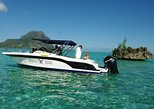 Full Day Speed Boat West Coast Mauritius: Including Lunch at Ile Aux Bénitier