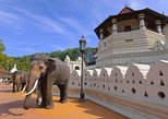 3 Days Tour to Kandy Nuwara Eliya & Sigiriya from Ahungalla