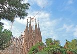 Sagrada Familia Morning Hours Tours