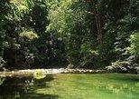 Magical Mermaid Pool and Caroni Swamp