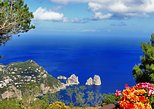Sorrento Coast and Capri Boat Experience from Positano