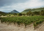 """Hike to the top of """"Pic Saint Loup"""" and wine tasting at a winery"""