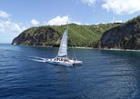 Soufriere Full-Day Land and Sea Combo Tour