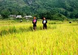 PRIVATE SAPA TOUR 2 DAYS 1 NIGHT BY BUS ( Overnight in Hotel)