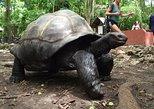 Prison Island Trip. Home of huge Tortoises