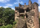 Private Walking Tour through Heidelberg
