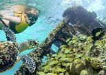 Cancun Reef and Shipwreck Exploration Snorkeling Tour. Canc�n, MEXICO