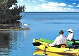 Kayak or Paddleboard Backcountry Tours