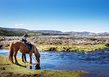 non touristy things to do in reykjavik | try horseback riding