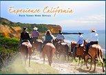 90 minute horseback trail ride