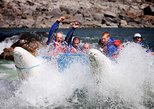 Half-Day Thompson River Motorized Rafting