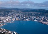 Wellington Shore Excursion City Sightseeing Tour