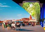 Horse Carriage Ride with Majorelle Garden