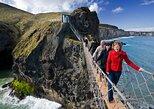 Europa - Irland: Tagesausflug Giant's Causeway und Carrick-A-Rede-Hängebrücke ab Dublin