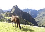 2 days inca trail to machu picchu