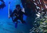Diving package Caribbean dream from Playa del Carmen