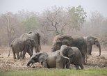 4 Days Wildlife Safari Cycling and Hiking Adventure Holiday