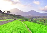 3 Days Private Tours: Explore The Best Of Bali