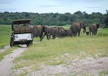 8-Day Botswana and Namibia Tour from Maun
