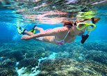 2-Day Best of Cairns and the Great Barrier Reef