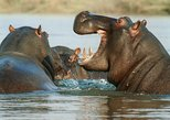 3 Days Tsavo East - West Safari starting from Mombasa