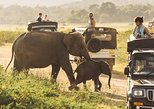 9-day Tour of Adventure & Sri Lanka Wildlife